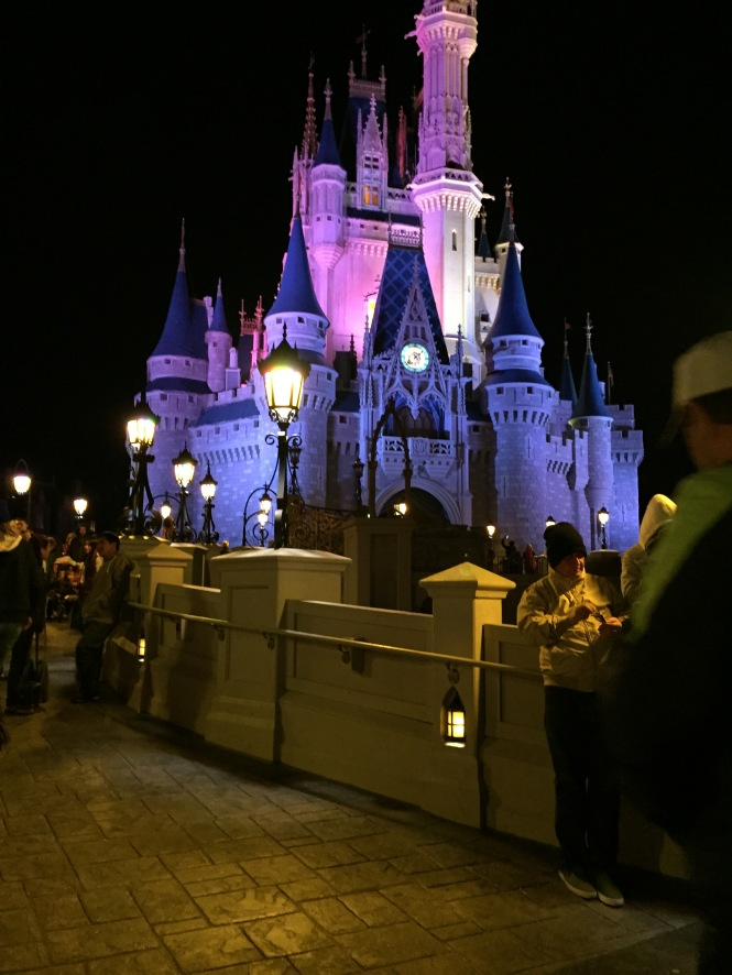 Alexa took this photo with my phone- it is the only one we have of the castle at Disneyworld!