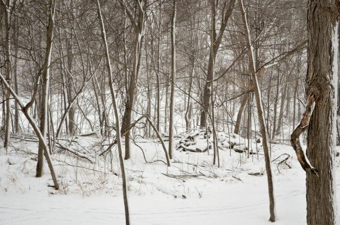 winter 2016-3