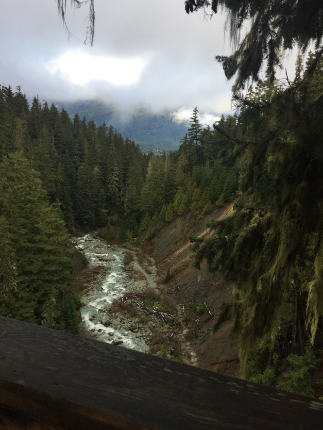 View from high above Fitzsimmon's Creek, which flows from the glaciers separating Whistler and Blackcomb mountains.