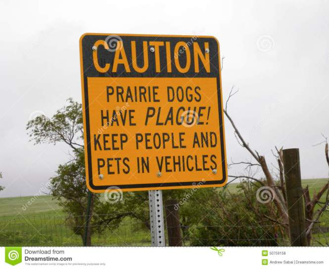 prairie-dogs-have-plague-sign-warning-to-stay-away-dog-towns-animals-themselves-might-contain-50759158